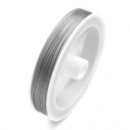 Coated wire 100 metres Transparent/ Silver