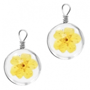 Charms with dried flowers 12mm Yellow