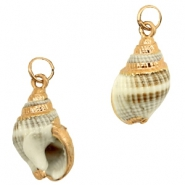 Shell bead specials Whelk Greige Brown-Rose Gold
