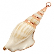 Shell bead specials Whelk Cream Beige-Rose Gold