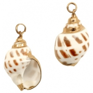 Shell bead specials Whelk Cream Brown-Rose Gold