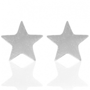 Stainless steel earrings star Silver