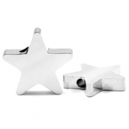 Stainless steel beads star Silver