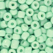 Glass seed beads 6/0 (4mm) Neo Mint Green