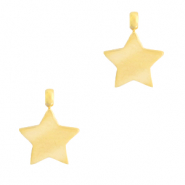 Stainless steel charms star Gold