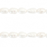 Freshwater pearls round 8mm Natural White