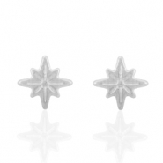 Stainless steel earrings/earpin star Silver
