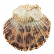 Shell pendant specials Scallop Leopard Brown-Gold