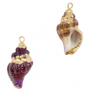 Shell pendant specials Whelks Purple-Gold