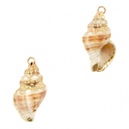 Shell pendant specials Whelks Creamy Light Brown-Gold