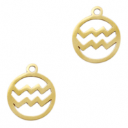 Stainless steel charms zodiac sign Aquarius Gold