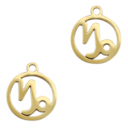 Stainless steel charms zodiac sign Capricorn Gold