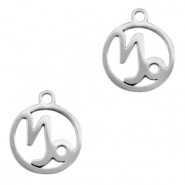 Stainless steel charms zodiac sign Capricorn Silver