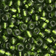 Glass seed beads 6/0 (4mm) Army Green Silver Lined