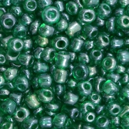 Glass seed beads 6/0 (4mm) Jade Green Transparent