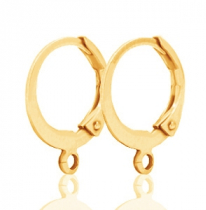 DQ earrings Gold plated